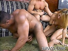 Girl and bisexual fellows