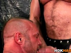 Gay bears ass fucked raw