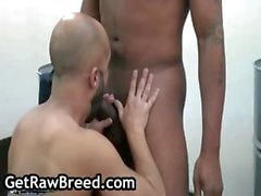 Kamrun and Igor Lucas gay interracial
