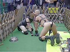 Folsom Berlin - Slave and Doggyplay 2 from 2014