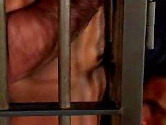 Edu Boxer Manu Maltes caged