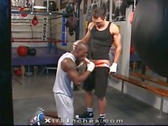 Great interracial gay scene in the boxing rink