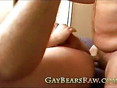 Gay Bear Anal Rimming